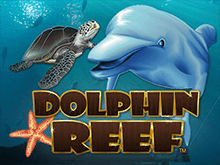 Dolphin Reef от Microgaming